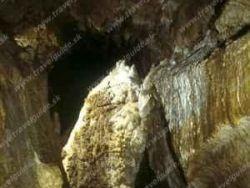Jaskyňa mŕtvych netopierov Jarabá
