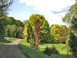 Arboretum KYSIHÝBEL Banská Štiavnica (Bańska Szczawnica)