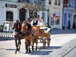 HUCUL TOUR Košice (Kassa)