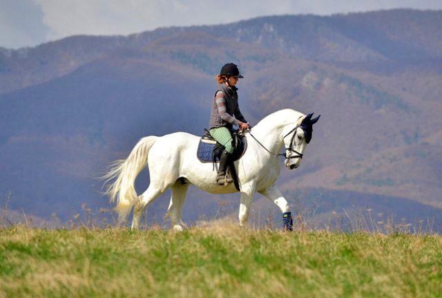 Jazda na koni ako zitkov darek - Platnos 12 mesiacov
