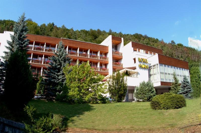 Hotel FLÓRA - Wellness hotel #1