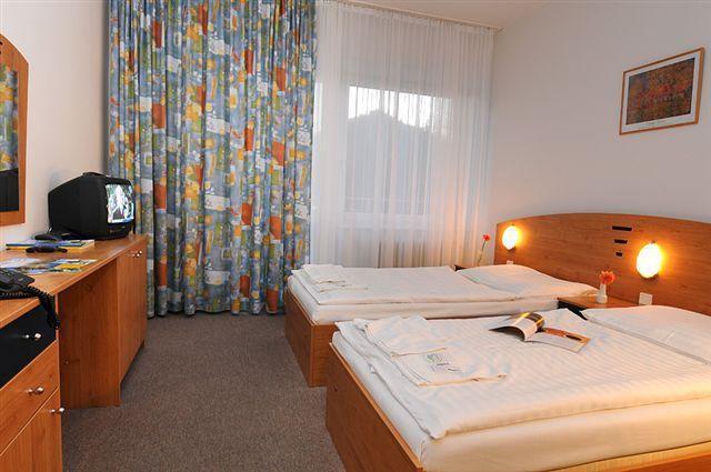 Hotel SOREA MAJ #10