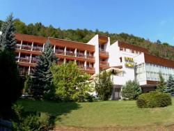 Hotel FLÓRA - Wellness hotel Trenčianske Teplice