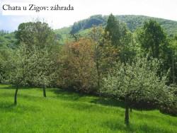 Hütte Zigov #10