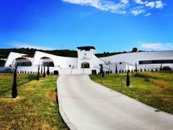 Chateau GRAND BARI #64