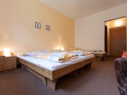 Horský Hotel Teplica & Ski centrum #5