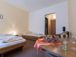 Horský Hotel Teplica & Ski centrum #9