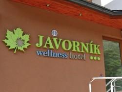 Horský Wellness hotel JAVORNÍK #7