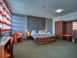 Hotel Avalanche #14