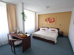 Hotel BARÓNKA #23