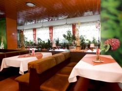 Hotel BOROVÁ SIHOŤ #8