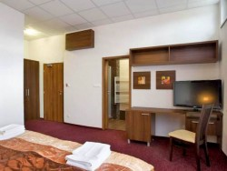 Garni Hotel BRANČ #8