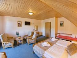 Hotel GOBOR Vitanová #10