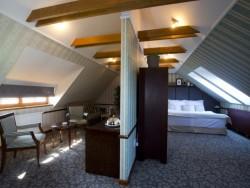 Hotel GOLDEN EAGLE #3