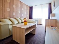 Hotel HVIEZDA #20