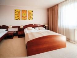 Hotel IMPOZANT #49