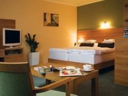 Hotel Karpaty #7
