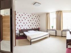 Hotel KORUNA #21