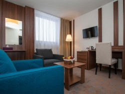 Hotel METROPOL - kongres & welness hotel #8
