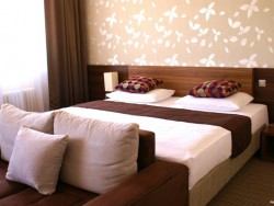 Hotel METROPOL - kongres & welness hotel #13
