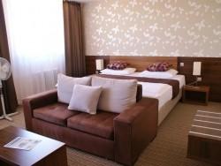 Hotel METROPOL - kongres & welness hotel #15