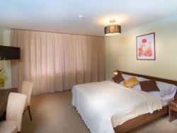 President Hotel Montfort Tatry Wellness  #8