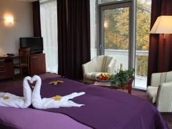 Hotel PARK AVENUE #11