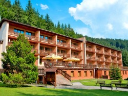 Hotel PODJAVORNÍK Papradno