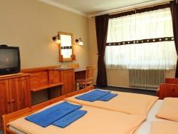 Hotel RAJ #12