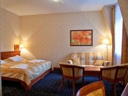 Hotel sv. Ludmila #13