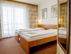 Wellness Hotel THERMAL - Thermal VADAŠ Resort #23