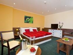 Hotel Viktor #23