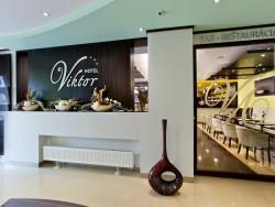 Hotel Viktor #43