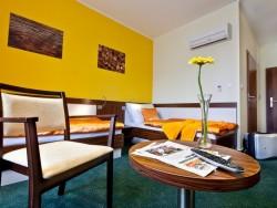 Hotel Viktor #30
