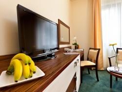 Hotel Viktor #31