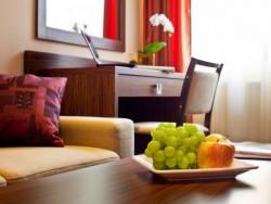 Hotel Viktor #33