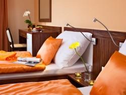 Hotel Viktor #35