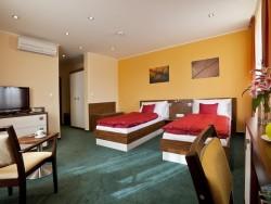 Hotel Viktor #41