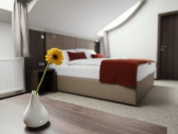 Hotel FRANCESCO #6