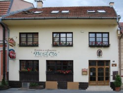 Pension and restauran U Nestora Prešov