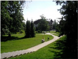 Vila Borievka #4