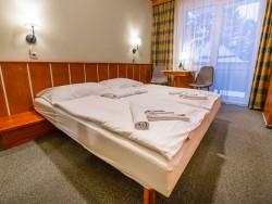 Wellness Hotel ČINGOV #38