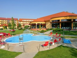 Family WELLNESS HOTEL PATINCE #4