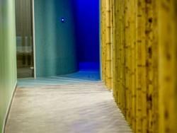 Wellness Hotel THERMAL - Thermal VADAŠ Resort #58