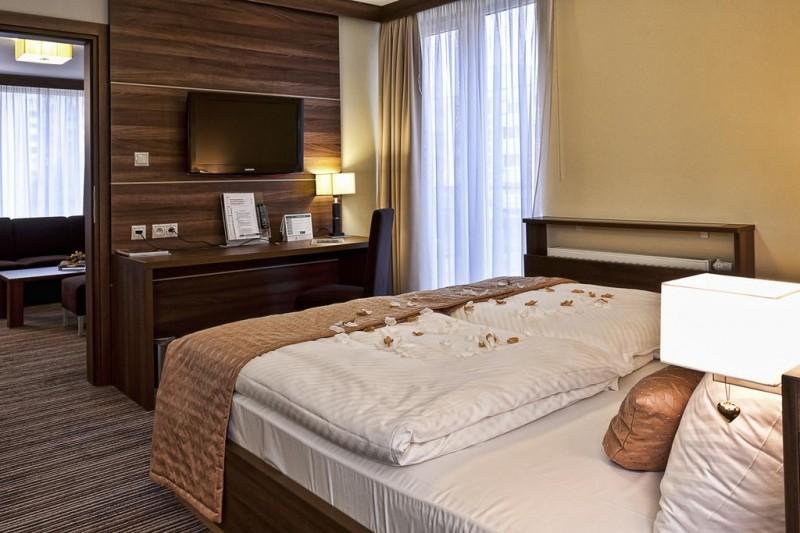 Alexandra Business Hotel #9