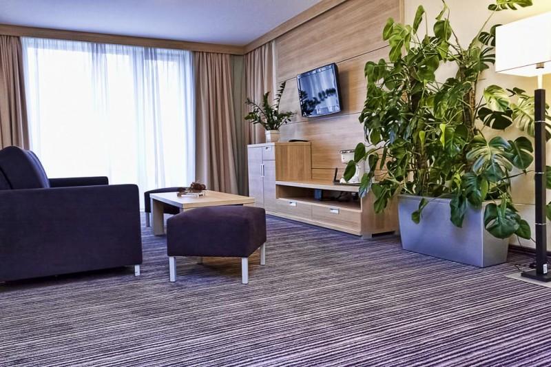 Alexandra Business Hotel #11