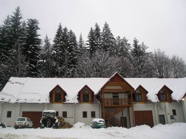 Apartmány DREVO LÍŠKA PLUS #2