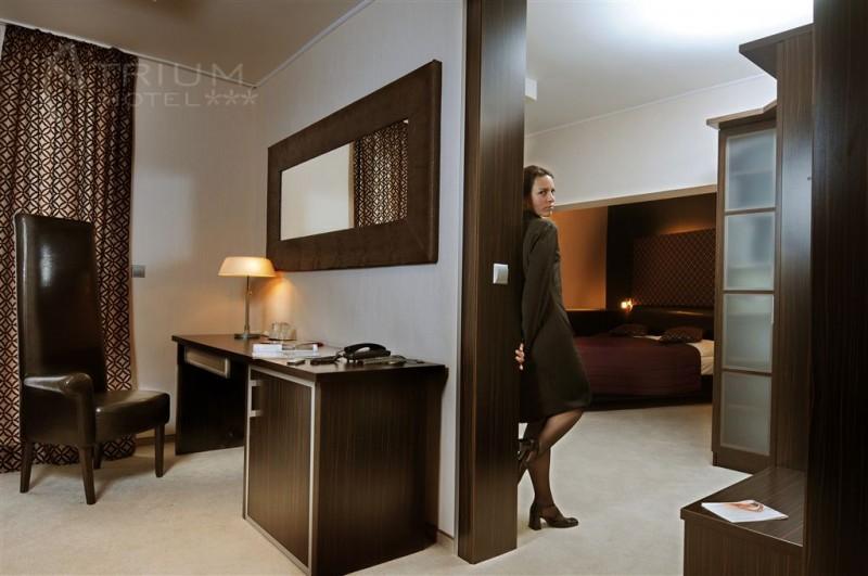 ATRIUM HOTEL #10