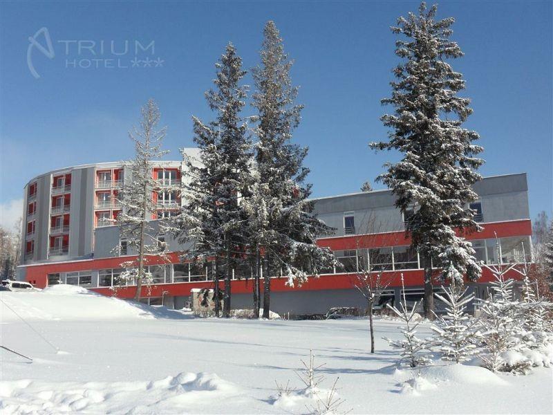 ATRIUM HOTEL #22