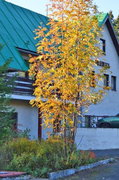 Hütte Hron #4